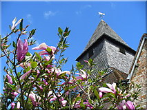 SU6462 : St Mary's Church Tower, Silchester by Colin Smith