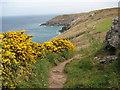 SW4840 : Coast path above Brea Cove by Philip Halling