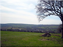 SX0368 : Field near Tregleath by Rod Allday