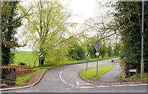 J2458 : The Old Coach Road, Hillsborough by Albert Bridge