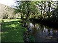 SN0035 : Still waters, Afon Gwaun by ceridwen