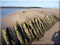 NT6480 : Shipwrecks on the Tyne Sands, East Lothian by Richard West