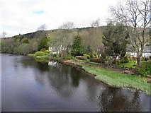 NN6207 : River Teith, Callander by Kenneth  Allen