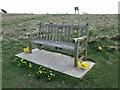 TQ4905 : Memorial bench, Bopeep, near Alciston by nick macneill
