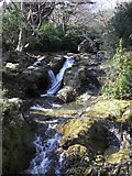 J3730 : The Glen River in Donard Forest , Newcastle by HENRY CLARK