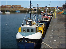 NT6779 : Ships of The Line at Victoria Harbour, Dunbar, East Lothian by Richard West