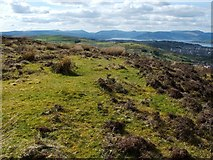 NS2973 : Lurg Moor Roman fortlet by Lairich Rig