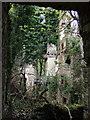 SM9532 : Ruined mansion, Llanstinan, interior (1) by ceridwen
