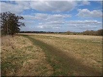 ST6768 : Avon flood plain by Derek Harper