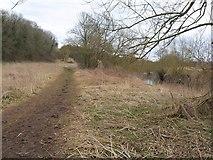 ST6570 : River Avon Trail by Derek Harper