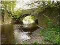 SS6706 : Taw Bridge on the river Taw as seen from downstream by Roger A Smith