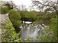 SS6615 : The view upstream from Colleton Bridge on the river Taw by Roger A Smith