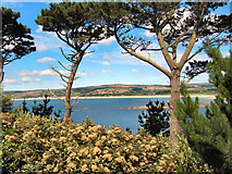 SW5031 : View from St Michael's Mount by David Dixon