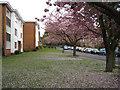 SP1196 : Garrard Gardens, Sutton Coldfield by Robin Stott