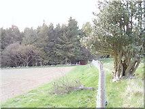 NZ5812 : Slacks wood by Reece Fowler