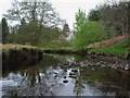 NM8703 : Ford River in low flow conditions by Patrick Mackie