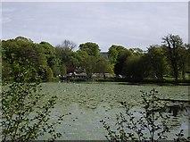 NS2209 : Culzean Castle - Swan Pond by Kenneth Mallard