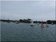 TQ2105 : Yachts on River Adur by Paul Gillett