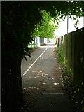 TL8364 : Footpath to Westley by John Goldsmith