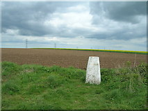 SE9238 : Trig Point on Newbald Wold by JThomas