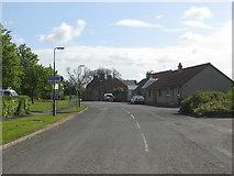 NT3160 : A scene in Carrington, Midlothian by James Denham