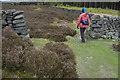 NZ6206 : Footpath on Holiday Hill by Tom Richardson
