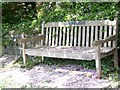 ST9917 : Memorial bench, Sixpenny Handley by Maigheach-gheal