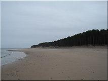 NJ0064 : Culbin Forest Beach by Alan Hodgson