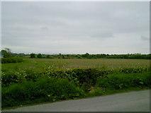 N9346 : Landscape, Co Meath by C O'Flanagan