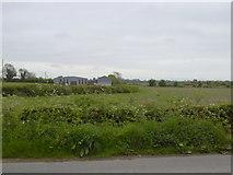 N9346 : Farm Sheds, Co Meath by C O'Flanagan