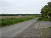 N9346 : A Bend in the Road, Co Meath by C O'Flanagan