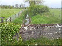 N9647 : Stream, Portan, Co Meath by C O'Flanagan