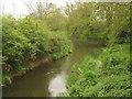TQ4645 : River Eden flowing towards Hever by David Anstiss
