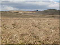 NY5775 : Panorama from the cairn north of Borderrigg (18: NE - White Preston) by Mike Quinn