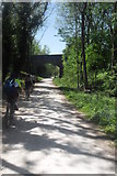 SK1750 : Bridge over the Tissington Trail by Anthony Parkes