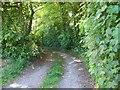 SU4256 : Footpath, Crux Easton by Maigheach-gheal