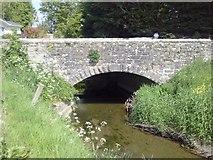 N8957 : Skane River, Co Meath by C O'Flanagan