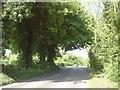 N8757 : Country Road, Co Meath by C O'Flanagan