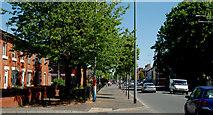J3574 : The Newtownards Road, Belfast by Albert Bridge