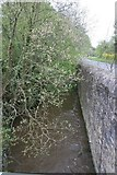 SO2956 : Wall by the brook by Bill Nicholls