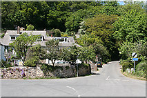 SX5548 : Newton and Noss: short cut to Yealmpton by Martin Bodman