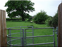 SP2871 : Footpath from John O'Gaunt Road to Oaks Farm by John Brightley