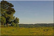 TQ1450 : Steers Field by Ian Capper