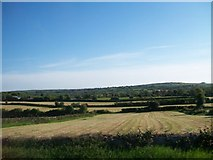 J3633 : Harvested hay fields between Church Hill Road and Carnacavill Road by Eric Jones