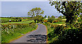 J1340 : The Tower Road near Loughbrickland (2) by Albert Bridge