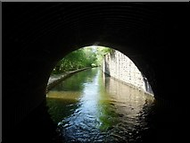 SE0026 : Rochdale Canal at Falling Royd Bridge by Christine Johnstone