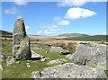 SN1330 : Mynydd Preseli hills and Waldo Williams. by Derek Voller