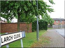 SP0858 : Larch Close, Alcester by Alex McGregor