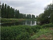 SK3528 : River Trent upstream at Barrow-on-Trent by John M