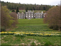 NT4227 : Bowhill House from the Avenue by Clive Nicholson